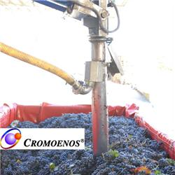 Analysis of the color of grapes right at the harvesting trailer